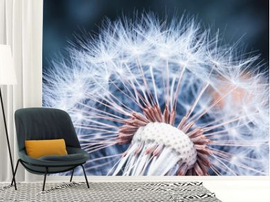 beautiful natural background of airy light dandelion flower with white light seeds on plant head