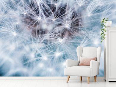 natural background of airy light dandelion flower with white light seeds