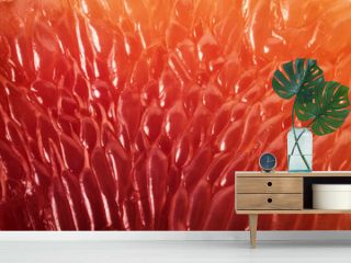 Grapefruit slice background. Abstract macro shoot.