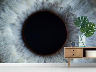 Blue eye male human super macro closeup. Healthy vision test concept