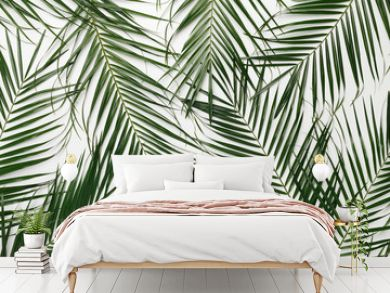 Tropical background with green natural monstera leaves