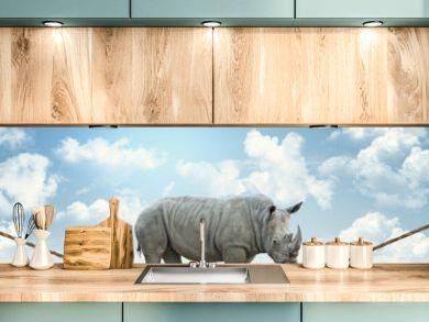 rhino on rope