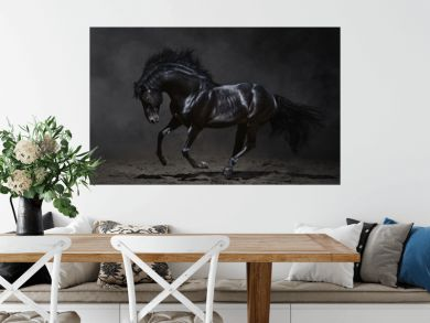 Galloping black horse on dark background