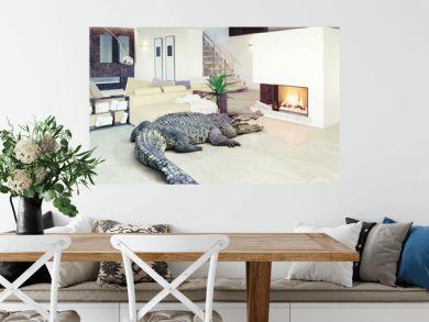 crocodile  in the luxury interior