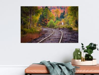 Autumn color along a railroad track in White Mountain National F