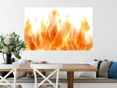 Fire. 3D. Fire Flames on white