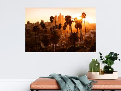 Beautiful sunset through the palm trees, Los Angeles, California.