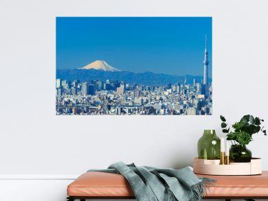東京風景 2020年1月 富士山と大都会