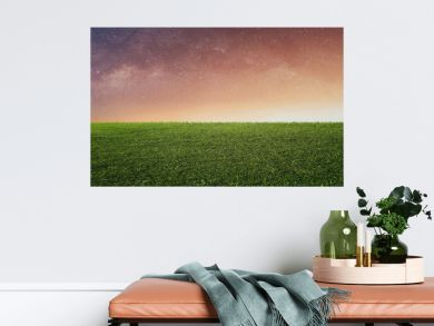 Starry sky with sunlight over green grass