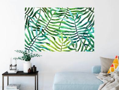 Tropics2