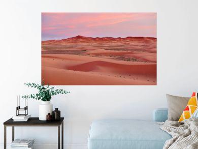 View of Sahara desert in Merzouga, Morocco, at sunset