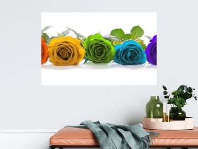 Beautiful Rainbow Colored Row of Roses - a single line of rose heads facing forwards in red, orange, yellow, green, turquoise, indigo and magenta representing the seven chakras