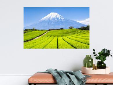 Berg Fuji und Teefelder in Japan