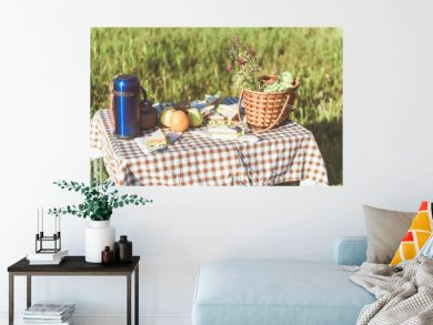 Appetite sandwiches, thermos bottle and basket with fresh fruits on table on the grass
