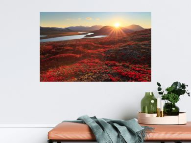 Autumn landscape with mountain, valley and lagoon views. The slopes of the hill are covered with scarlet arctous. Amazing sunset with sun rays over the mountains. Mount Inakhpak, Chukotka, Russia.