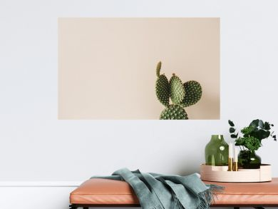 Closeup of cactus on beige background. Minimal floral composition.
