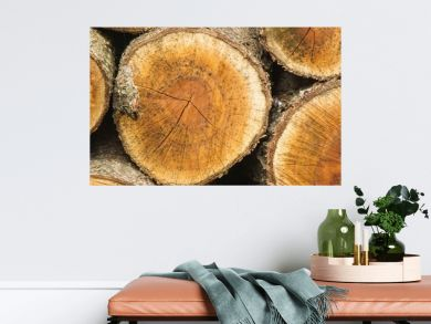 banner of Background of dry chopped firewood logs stacked up on top of each other in a pile