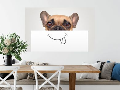 Funny Brown French Bulldog dog with half of face covered with white paper with painted on happy mouth with tongue sticking out