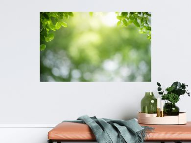 Beautiful nature view of green leaf on blurred greenery background in garden with copy space using as summer background natural green leaves plants landscape, ecology, fresh wallpaper concept.