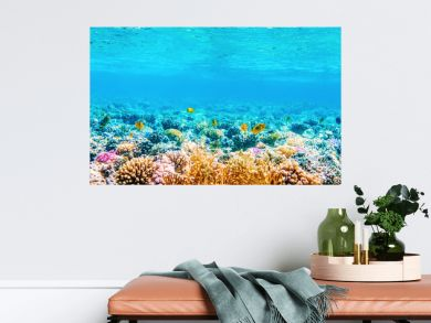 Beautifiul underwater panoramic view with tropical fish and coral reefs