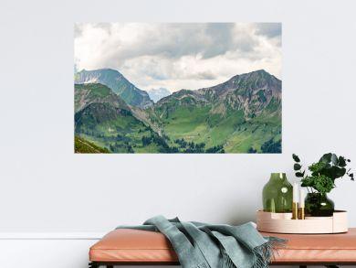 Switzerland, Panoramic view on green Alps near Schynige Platte, Saxeten