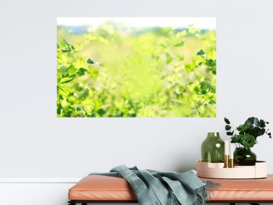 nature background with fresh juicy green foliage. artistic image of freshness nature. ecology, growth, save earth concept. summer season. banner.