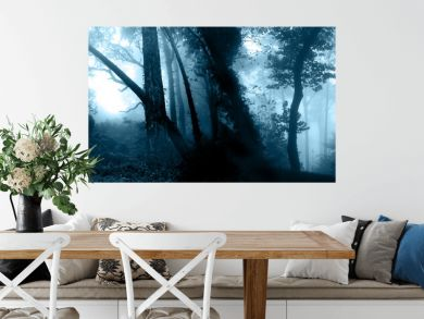 Mysterious landscape with trees and bushes in foggy forest