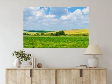 panorama beautiful view landscape field