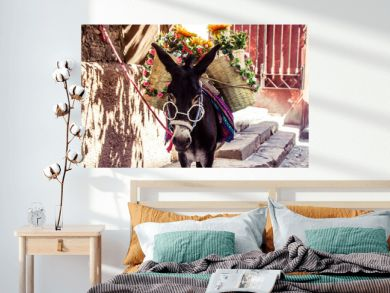 Funny mexican donkey with glasses fabrics and flowers