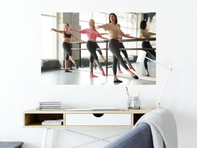 Full length portrait of row of elegant young women practicing ballet moves standing by bar against mirror in dance studio, copy space