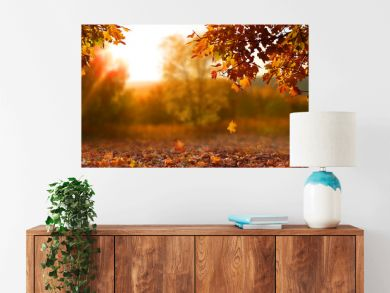 Beautiful autumn landscape with. Colorful foliage in the park. Falling leaves natural background