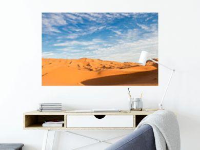 Vertical view of Sahara desert
