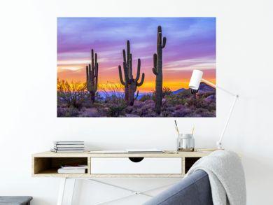 Stand of Saguaro Cactus At Sunset In Arizona