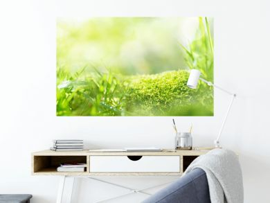 Meadow landscape with bright bokeh
