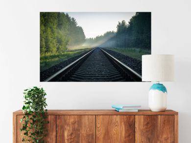 train rails in the sun and  electric poles
