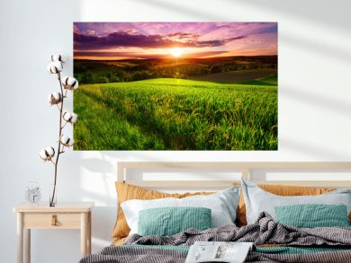 Sunset scenery on a green field with forests and hills on the horizon and the sky painted in gorgeous dramatic and emotional colors