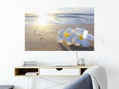 the beautiful flowers on beach background.JPG