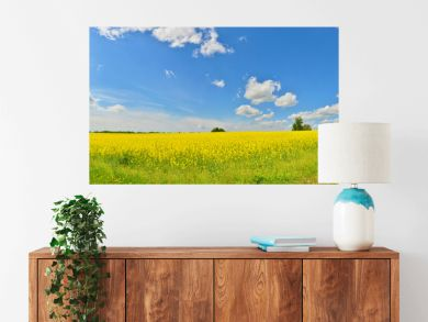 Spring view of countryside with green tree and a flower field