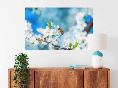 Honey bee flying to the White blooming flowers