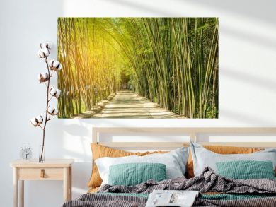 road with green bamboo forest curve natural tunnel cave