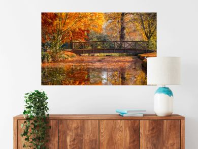 Wooden bridge in bushy park with autumn scene