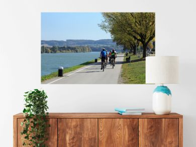 Group of people riding bicycles along the Danube river on the famous cycling route Donauradweg. Town of Ybbs an der Donau, Lower Austria, Europe.
