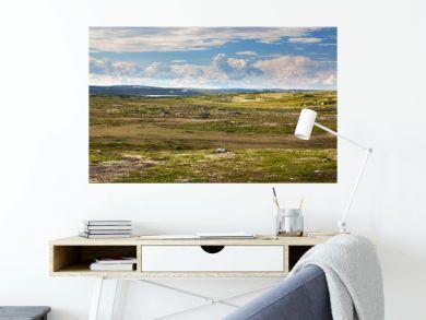 Tundra landscape in the north of Russia