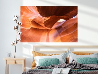 Panoramic Canyon Antelope Collection - abstract, background