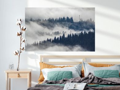 The view from the heights of the mountains and forests covered by fog