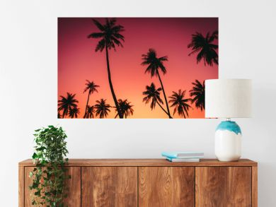 Tropical palm tree on sunset sky cloud abstract background.