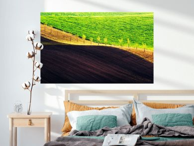 Rural spring landscape with colored striped hills. Green and brown waves of the agricultural fields of South Moravia, Czech Republic. Can be used like nature background or texture