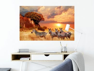 Zebras in the African savanna against the backdrop of beautiful sunset. Serengeti National Park. Tanzania. Africa.