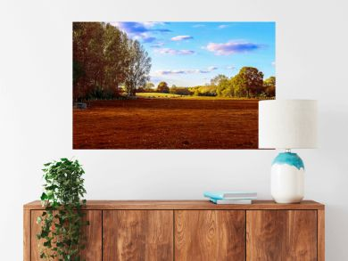 Beautiful panorama view on a golden autumn landscape found in europe