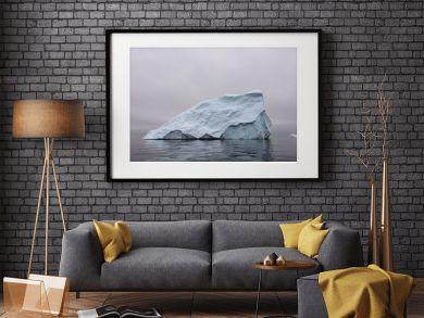 Iceberg in Antarctic sea
